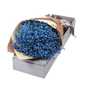 鲜花/星空下的爱恋:蓝色满天星礼盒装 花 语:星空下的爱恋