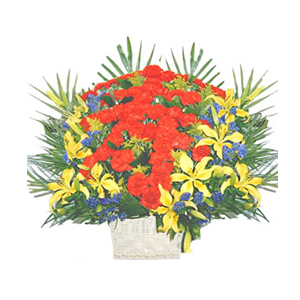 鲜花/寿比南山:60枝红色康乃馨,9枝黄色百合 包 装:白色带提花