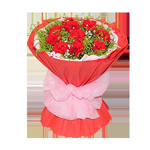 鮮花/難忘母愛:12枝紅色康乃馨 包 裝:粉色卷邊紙內襯,紅色瓦楞