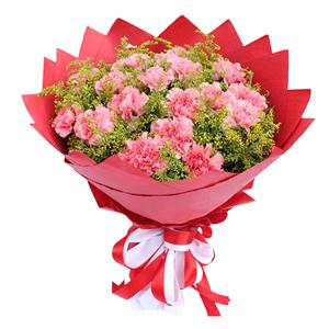 鲜花/粉色康乃馨: 16支粉色康乃馨  [包 装]:唯美红色纸包