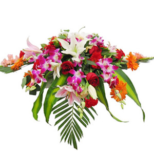 鲜花/锦绣前程:红玫瑰、粉百合、白百合、橘色太阳花、红色康乃馨、洋兰