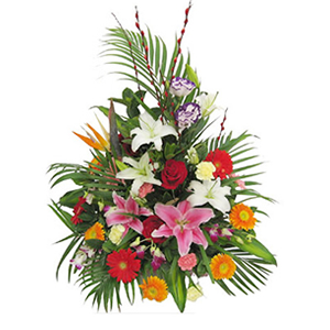 鮮花/步步高升:紅玫瑰、粉百合、白百合、橘色太陽花、紅色太陽花、黃色