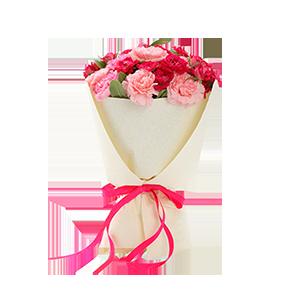 鲜花/天天开心:21枝多色康乃馨(包括粉色,桃红色) 花 语:祝您