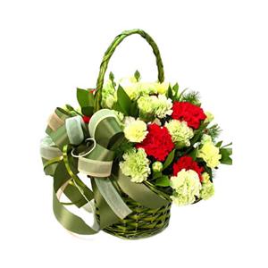 鲜花/暖暖父爱:8支红色康乃馨,18支绿色康乃馨(或用黄康代替)
