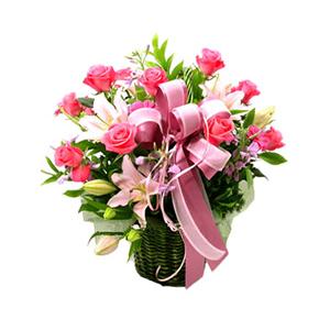 鲜花/春天: 粉色玫瑰12枝、太阳花5支、粉色百合2支