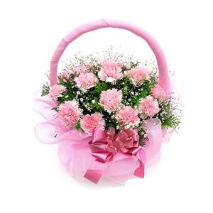 鲜花/祝福永远:28枝粉色康乃馨 [包 装]:圆形花篮,粉色网