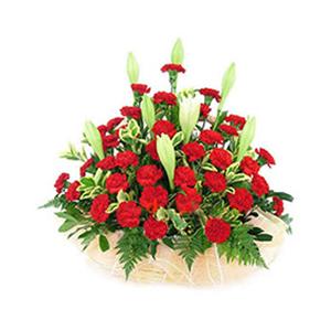 鲜花/亲情浩恩:36枝红色康乃馨 [包 装]:花篮精美包装