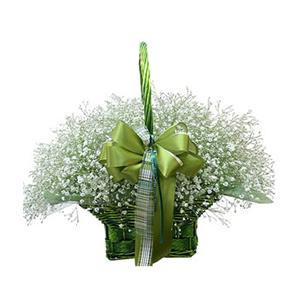 鲜花/漫天星辰: 满天星  [包 装]:有柄圆形提篮,绿色丝带