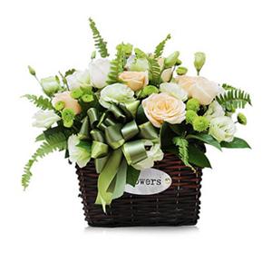 鲜花/健康快乐:9朵香槟玫瑰 9朵白色玫瑰,绿色桔梗、绿色雏菊 、绿