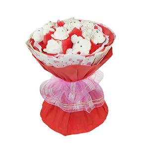 卡通花束/淺淺笑(卡通花束): 9只小熊單獨包裝  [包 裝]:紅色和粉色印