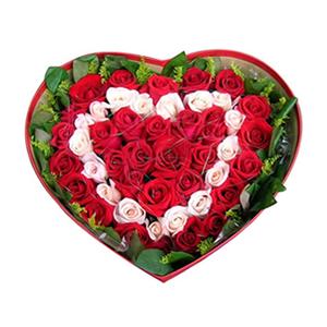 鲜花/幸福环绕:17只戴安娜粉玫瑰,31只红玫瑰 包 装:心形礼盒