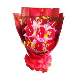 鲜花/红红火火:9枝红掌 配材:跳舞兰5枝(因季节地域原因可调换其他