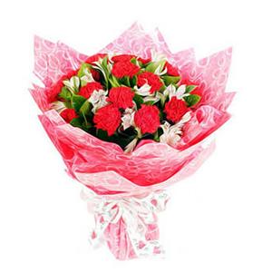 鲜花/幸福妈妈:红色康乃馨18枝 [包 装]:红色珠光纸圆形包