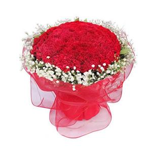 鲜花/福乐绵绵 :99枝红色康乃馨 [包 装]:红色网纱圆形精美