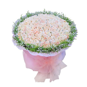 鮮花/溫柔的記憶:365枝香檳玫瑰 包 裝:粉色卷邊紙圓形包裝,同色