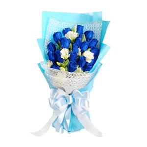 鲜花/海誓山盟: 19枝蓝玫瑰  [包 装]:白色纱网及蓝色皱