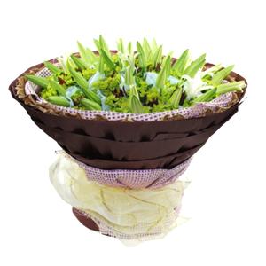 鲜花/幸福永远:精品白百合21枝单独包装 包 装:紫色纱网内衬,咖