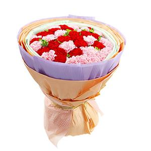 鮮花/溫馨的祝福:20枝粉色康乃馨,20枝紅色康乃馨 包 裝:綠色學