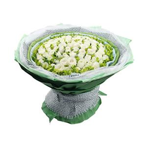 鲜花/爱意永恒:66支白玫瑰 包 装:白圆点的浅蓝色、绿色棉纸围边