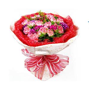 鲜花/真心祝福: 21枝粉色康乃馨  [包 装]:红色纱网、乳