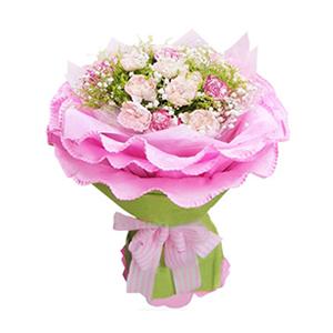 鲜花/暖暖的祝福: 16枝粉色康乃馨、5枝花边康乃馨(或者相近花材