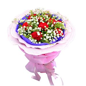 鲜花/我的祝福: 9枝红色康乃馨  [包 装]:紫色棉纸内衬,