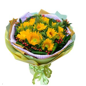 鲜花/面朝阳光: 11枝向日葵  [包 装]:淡紫色麻网内衬,