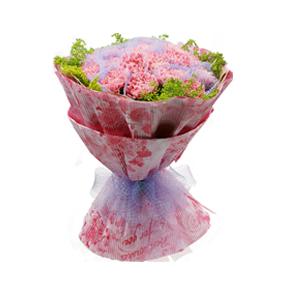 鲜花/温情回忆: 20枝粉色康乃馨精美包装  [包 装]:花纹