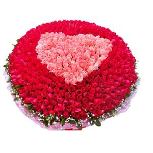 鲜花/美满一生:红玫瑰、粉玫瑰共999枝。 配材:满天星绿叶围绕