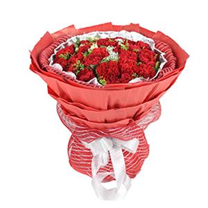 鮮花/母愛至上:33枝紅色康乃馨 配材:水仙百合、蕾絲、黃鶯,綠葉間