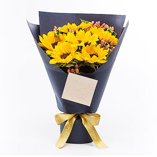 鲜花/守护使者:六支向日葵韩式包装 祝 愿:沉默的爱