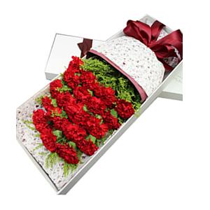 鲜花/永驻我心: 19支红色康乃馨  [包 装]:白色长方形精