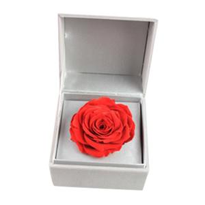 鲜花/花开不败: 厄瓜多尔巨型永生红玫瑰,直径9cm-10cm左