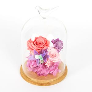 鲜花/爱丽丝: 厄瓜多尔进口永生热粉玫瑰1支(玫瑰直径5-6c