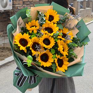 鲜花/春日里的暖阳: