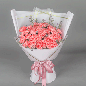 鲜花/永恒的关爱:19枝粉色康乃馨 花 语:母亲的爱是永恒的,她是一