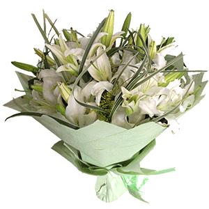 鲜花/真心真意:19枝白百合 花 语:好运时刻守着你,真心真意祝福