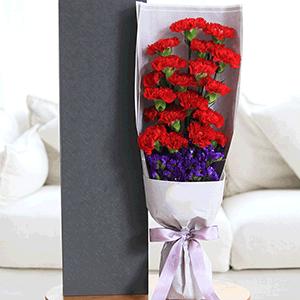鮮花/潤物春雨:19枝紅色康乃馨+高級配草 花 語:母愛如潤物春雨
