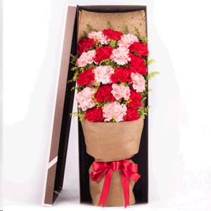 鲜花/感谢奉献:21枝红色康乃馨+粉色康乃馨 花 语:谁言寸草心,
