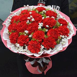 鲜花/温馨满满:21枝红色康乃馨+高级配草 花 语:岁月不会永恒,