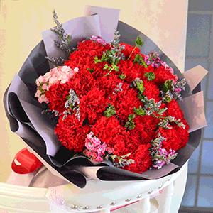 鲜花/温情问候:21枝红色康乃馨+粉色绣球+高级配草 花 语:母亲
