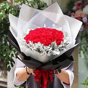 鲜花/甜蜜的爱恋:33枝精品红玫瑰+银叶菊装饰 花 语:喜欢和你在一