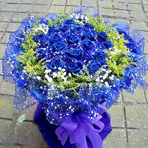 鲜花/情调:33枝蓝色妖姬 高级配草 花 语:从前的日色变得慢
