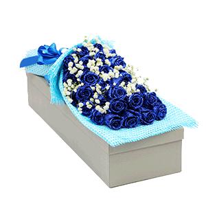 鮮花/思慕:33枝藍色妖姬 花 語:一生二人一往情深,三餐四季