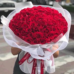 鲜花/老婆我爱你:66枝红玫瑰 花 语:我想一直的陪伴在你的左右,紧