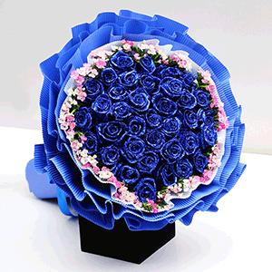鲜花/月出:66枝蓝色妖姬 高级配花 花 语:想给你温柔,也想