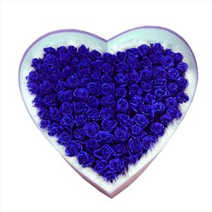 鲜花/佳丽:99枝蓝色妖姬 花 语:脸红是你,心跳是你,我的眼