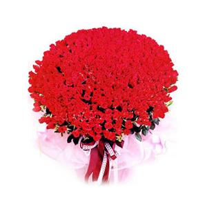 鲜花/花儿为谁红: 红玫瑰999枝  [包 装]:粉红色皱纸,丝
